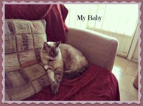 Baby on Maroon blanket 2-